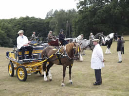 Riffhams Essex for the Carriages in the Park Event